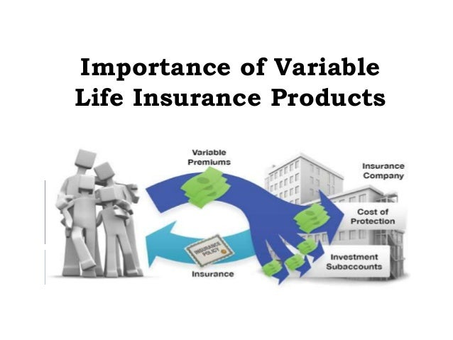 Organizing Several Funds With a Single Variable Life Insurance