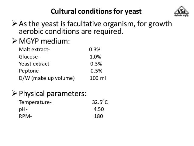Importance Of Yeast For Alcoholic Fermentation