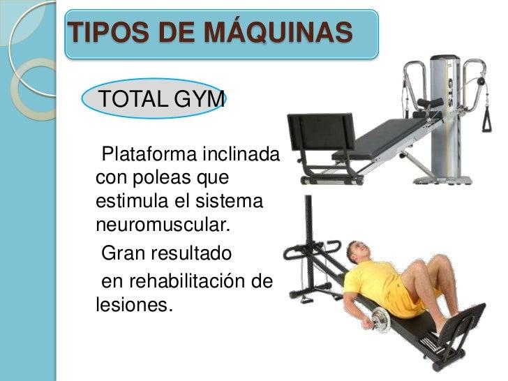 Importancia de la gym en la fisioterapia - Mobiliario de gimnasio ...