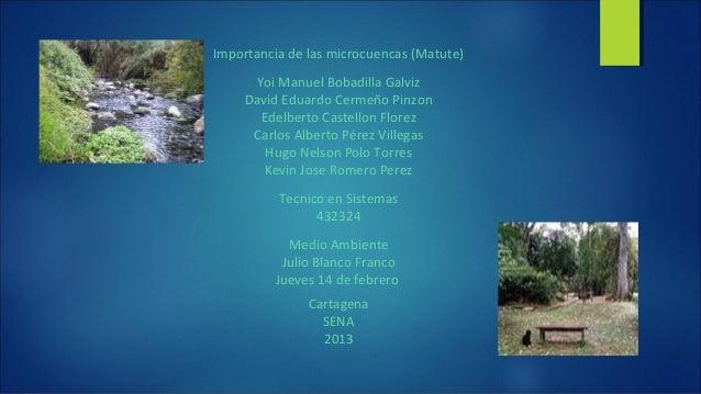 Importancia de las microcuencas (Matute)Yoi Manuel Bobadilla GalvizDavid Eduardo Cermeño PinzonEdelberto Castellon FlorezC...