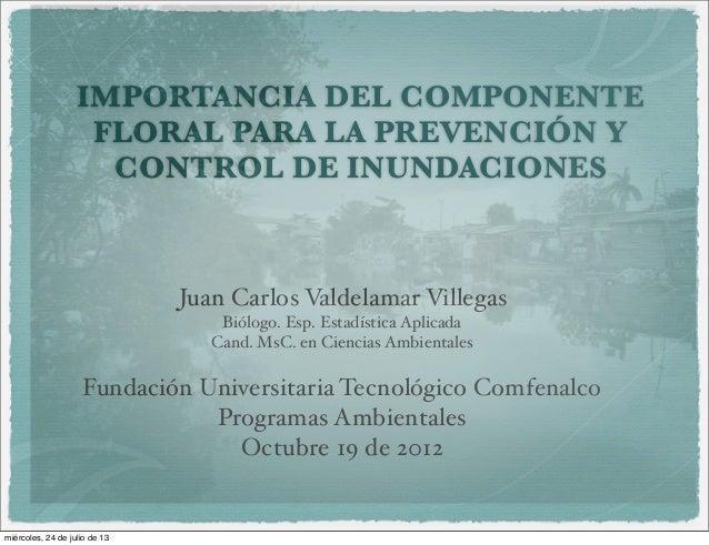 IMPORTANCIA DEL COMPONENTE FLORAL PARA LA PREVENCIÓN Y CONTROL DE INUNDACIONES Juan Carlos Valdelamar Villegas Biólogo. Es...