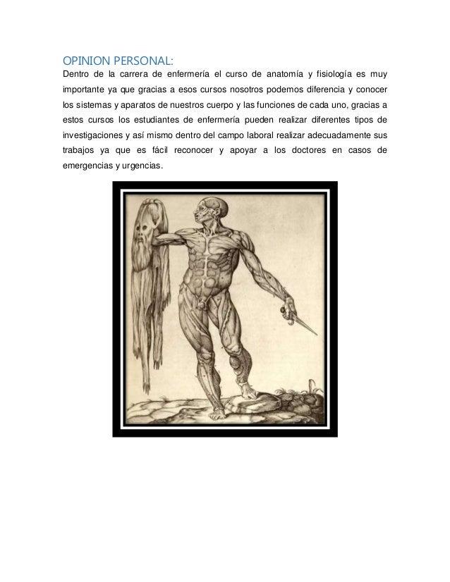 Importancia del curso de anatomía y fisiología