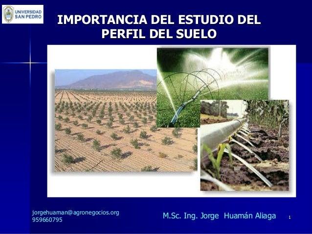 importancia del estudio del perfil del suelo