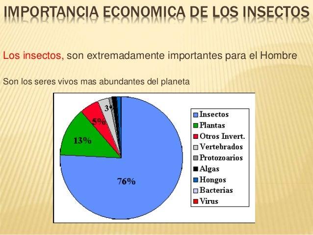 Importancia economica de los insectos for Porque son importantes los arboles wikipedia