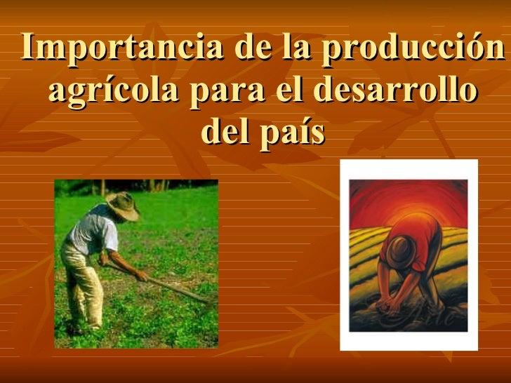 Importancia de la producción agrícola para el desarrollo del país
