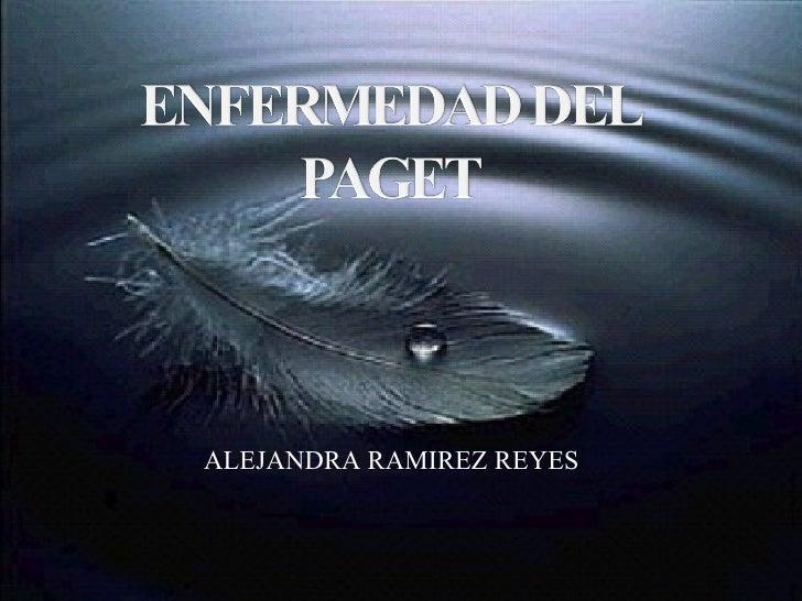 ALEJANDRA RAMIREZ REYES