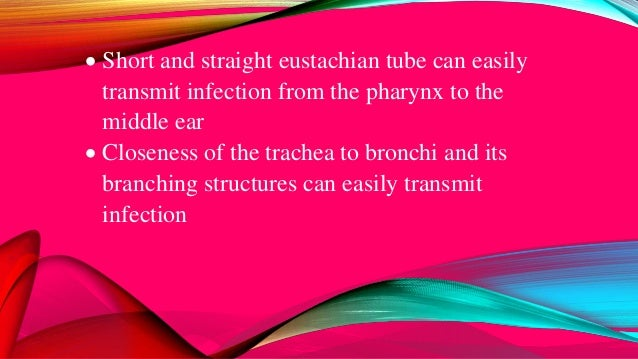  Short and straight eustachian tube can easily transmit infection from the pharynx to the middle ear  Closeness of the t...