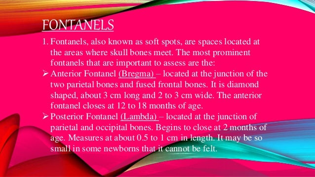 FONTANELS 1. Fontanels, also known as soft spots, are spaces located at the areas where skull bones meet. The most promine...
