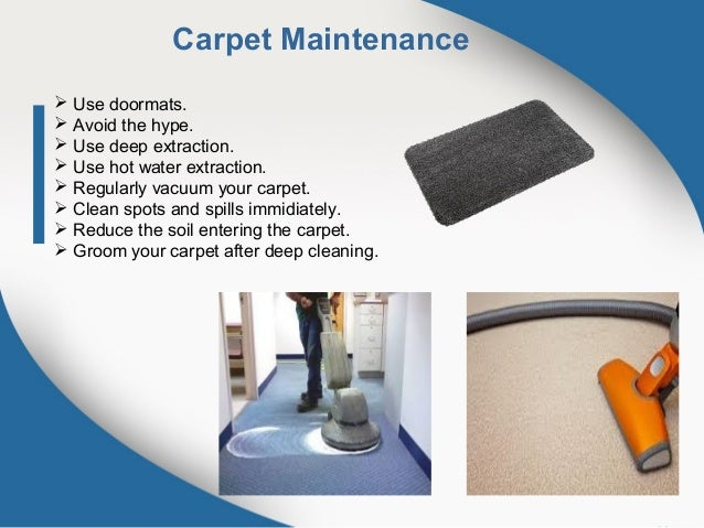 Image result for Why Carpet Cleaning is Important?