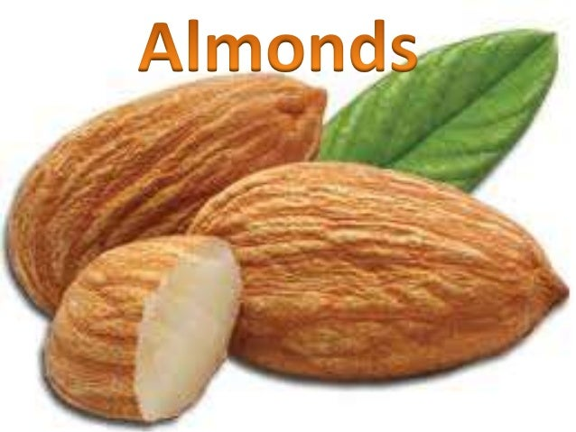 GENERAL CHARACTERISTICS  Almonds, though considered to be nuts are technically the seed of the fruit of the almond tree, ...