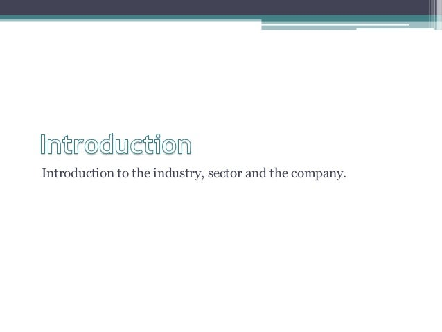 Introduction to the industry, sector and the company.