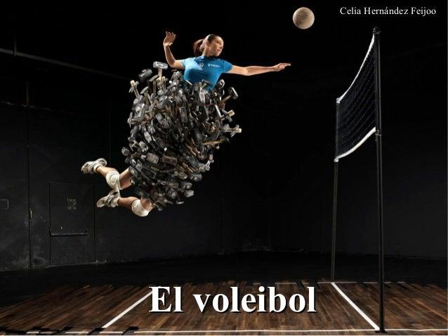 Celia Hernández Feijoo El voleibolEl voleibol