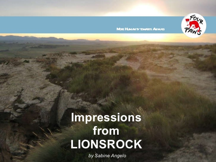Impressions from LIONSROCK by Sabine Angelo More Humanity towards Animals