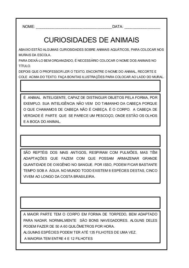 TUBARÃO TARTARUGA MARINHA TAMANDUÁ - BANDEIRA POLVO PATO TIGRE PAPAGAIO