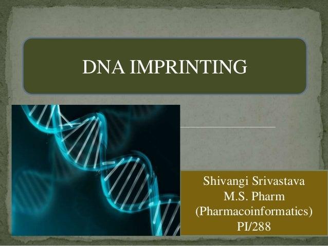 DNA IMPRINTING Shivangi Srivastava M.S. Pharm (Pharmacoinformatics) PI/288