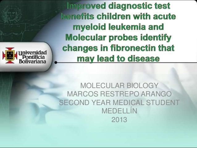 MOLECULAR BIOLOGY  MARCOS RESTREPO ARANGOSECOND YEAR MEDICAL STUDENT         MEDELLÍN           2013