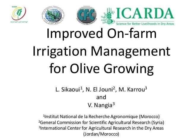 Improved On-farm Irrigation Management for Olive Growing L. Sikaoui1, N. El Jouni2, M. Karrou3 and V. Nangia3 1Institut Na...