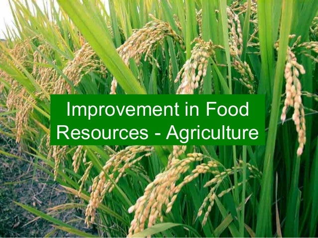Improvement in Food Resources - Agriculture