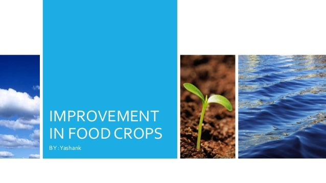 IMPROVEMENT IN FOOD CROPS BY :Yashank