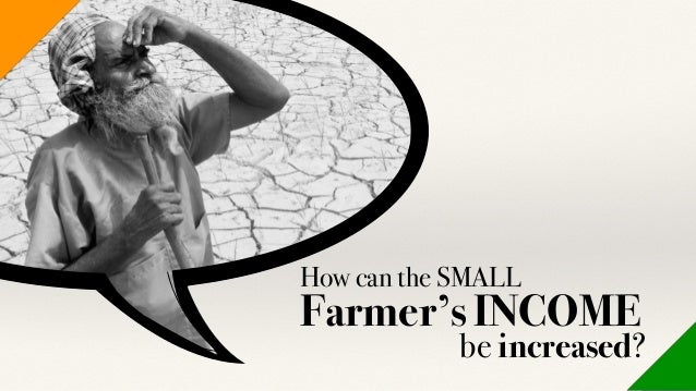 How can the SMALL Farmer's INCOME be increased?
