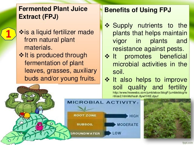 fermented fruit juice fertilizer pdf