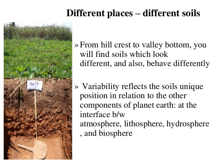 assessing soil suitability for irrigated agriculture in