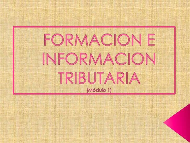 FORMACION E INFORMACION TRIBUTARIA(Módulo 1)<br />