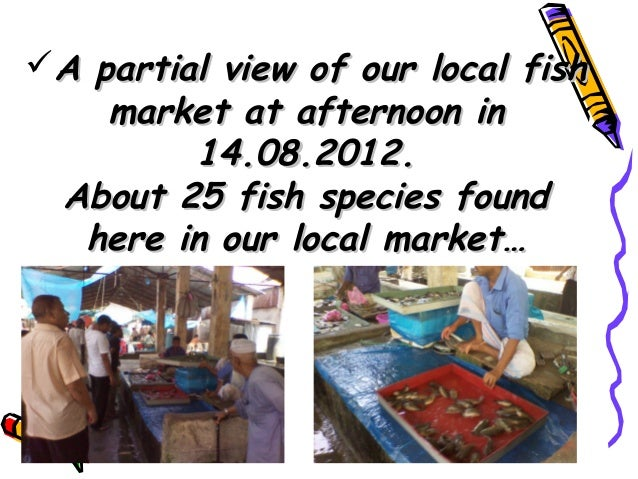 Local fish biodiversity status at nearest market here in for Closest fish market