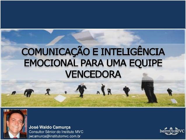 José Waldo Camurça Consultor Sênior do Instituto MVC jwcamurca@institutomvc.com.br