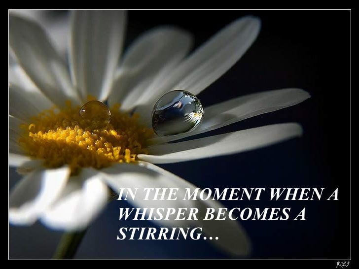 IN THE MOMENT WHEN A WHISPER BECOMES A  STIRRING…