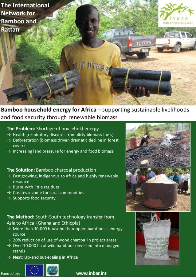 The InternationalNetwork forBamboo andRattanBamboo household energy for Africa – supporting sustainable livelihoodsand foo...