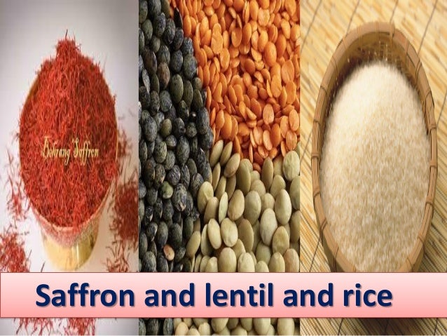 poetry and lentil Synonyms for lentil at synonymscom with free online thesaurus, antonyms, definitions and translations.