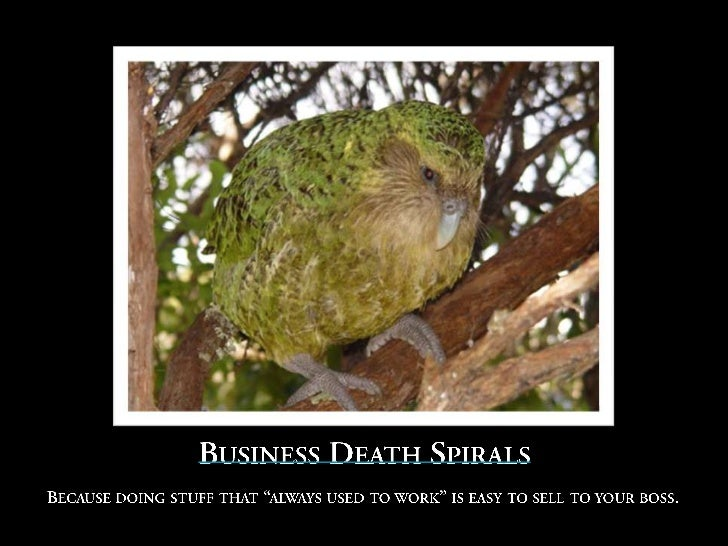 The Kakapo Parrot!For thousands of years, its greatest threat was overpopulation.So it developed a defense mechanism – cra...