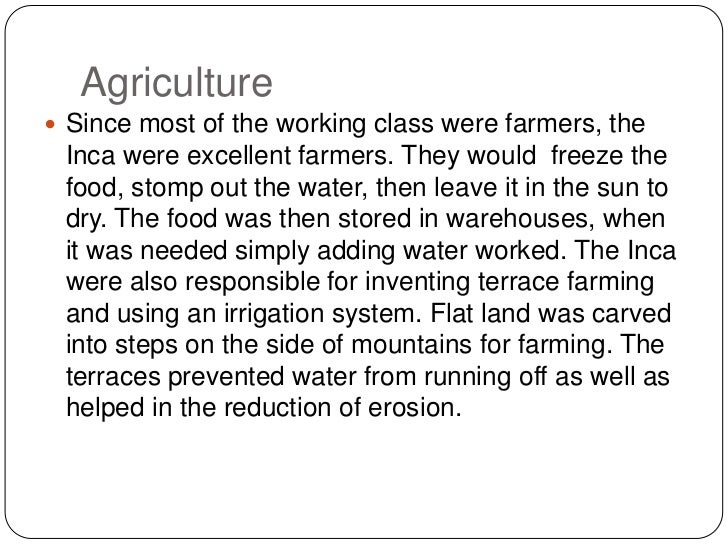 Agriculture<br />Since most of the working class were farmers, the Inca were excellent farmers. They would  freeze the foo...