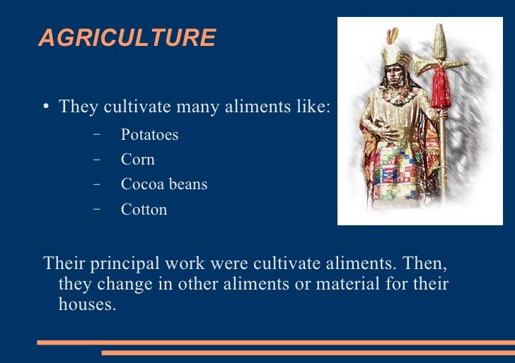 AGRICULTURE <ul><li>They cultivate many aliments like: </li></ul><ul><ul><li>Potatoes </li></ul></ul><ul><ul><li>Corn </li...