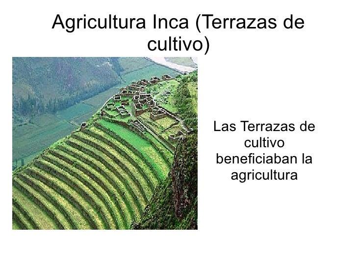 Incas 2