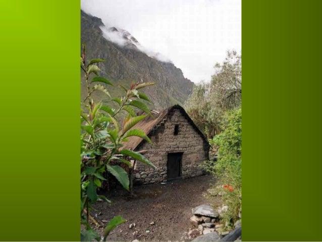 Incas chaf   copie