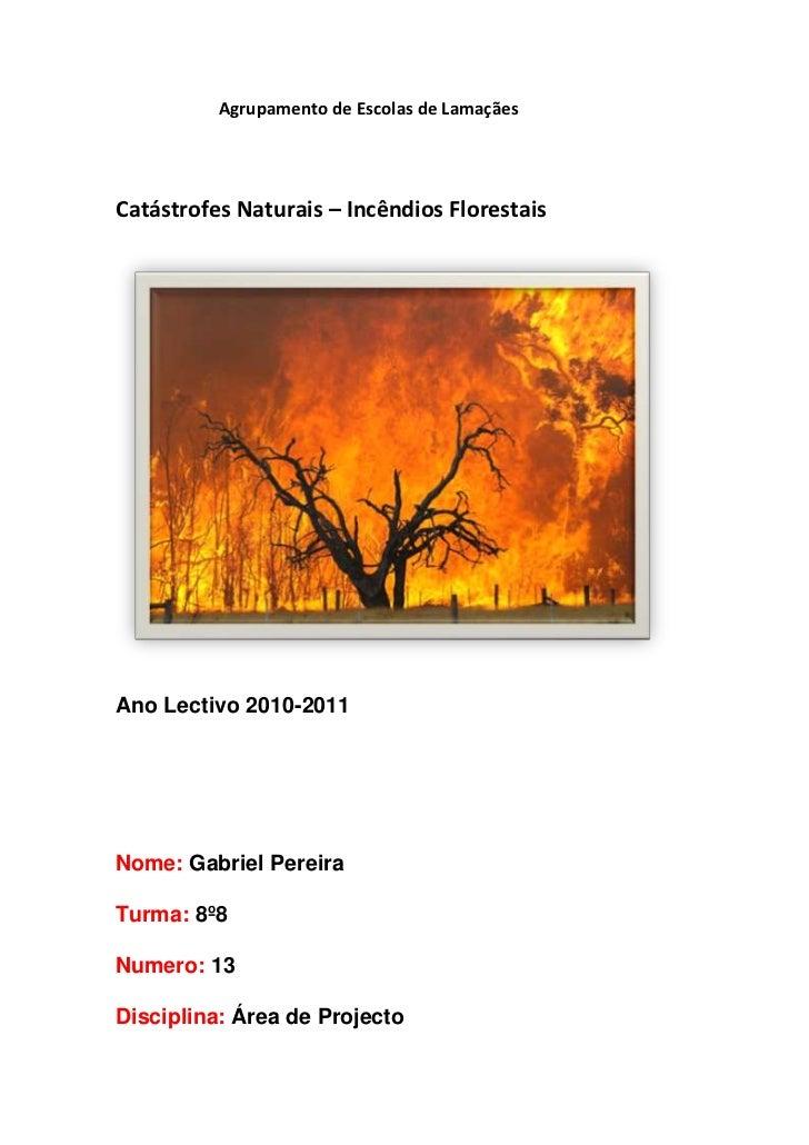 Agrupamento de Escolas de Lamaçães<br />                Catástrofes Naturais – Incêndios Florestai...