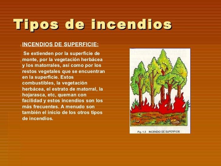 Incendios forestales for Tipos de plantas forestales
