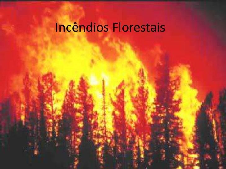 Incêndios Florestais<br />
