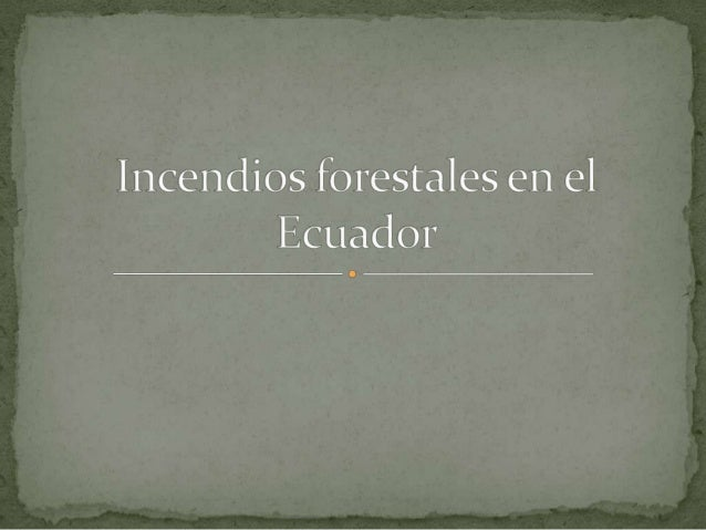    Quito, 22 sep (Andes).- Un total de 14 mil hectáreas se han perdido en el Ecuador a causa de los    incendios forestal...