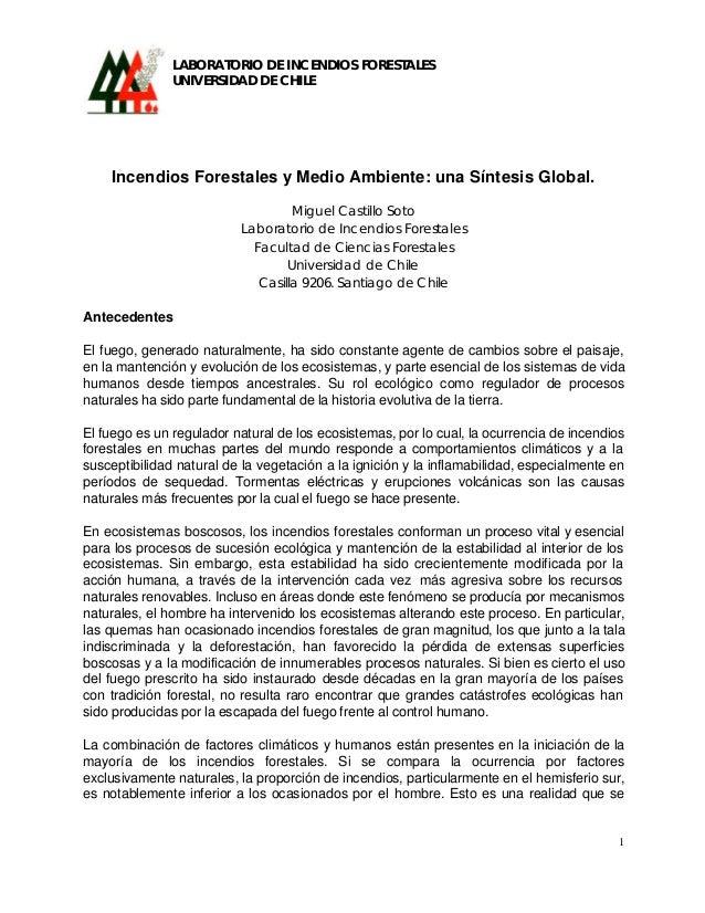 LABORATORIO DE INCENDIOS FORESTALES               UNIVERSIDAD DE CHILE    Incendios Forestales y Medio Ambiente: una Sínte...