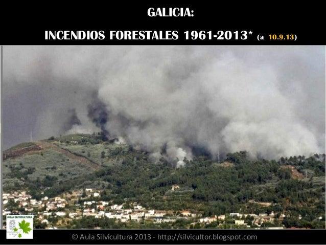 GALICIA: INCENDIOS FORESTALES 1961-2013* (a 10.9.13) © Aula Silvicultura 2013 - http://silvicultor.blogspot.com/