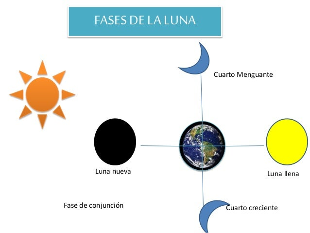 Incidencia de la luna en los cultivos for Proxima luna creciente