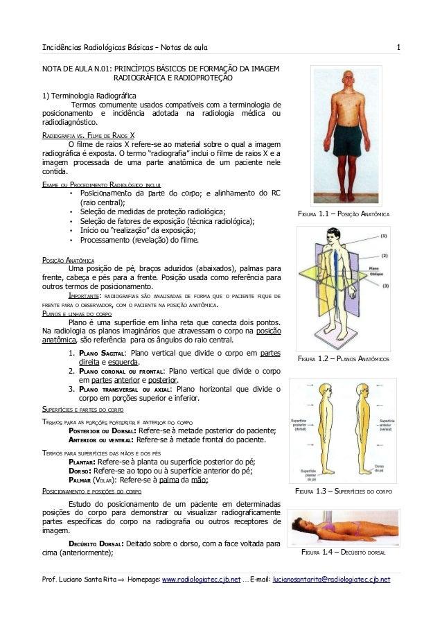 Incidências básicas na radiologia