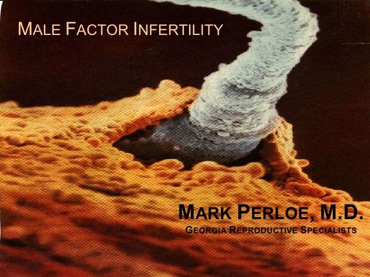 Male Fertility Overview Slide 1