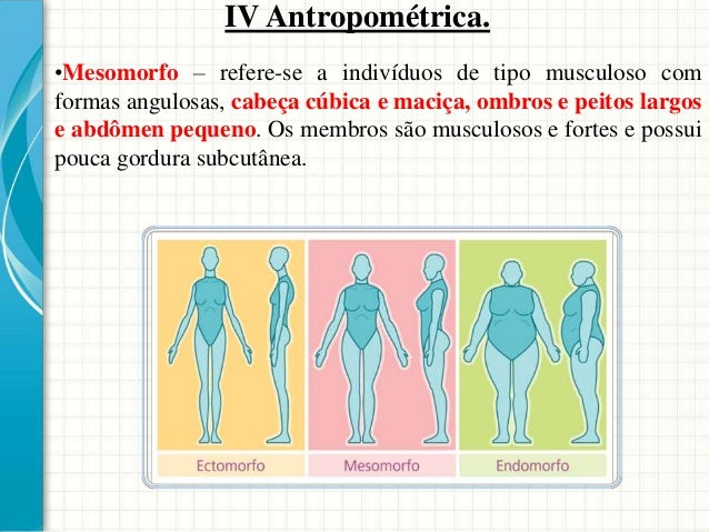 Tipos de medidas antropométricas As medidas antropométricas podem ser definidas como estática, dinâmica e funcional. •Medi...