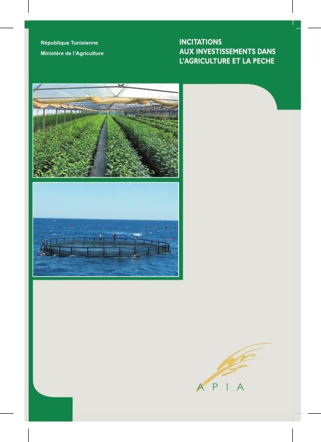 Incitations aux Investissements dans l'Agriculture et la Pêche