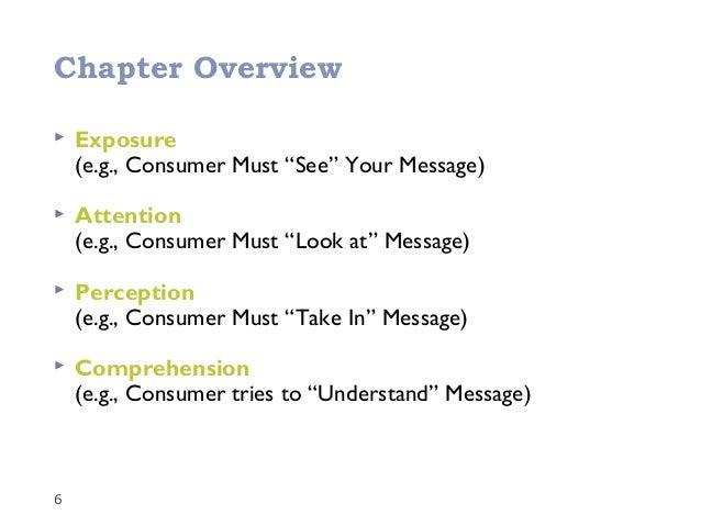 perception process in organisational behaviour pdf