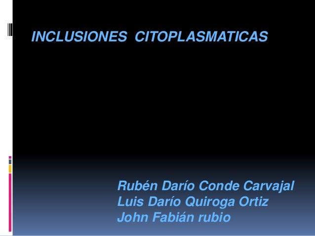 INCLUSIONES CITOPLASMATICAS         Rubén Darío Conde Carvajal         Luis Darío Quiroga Ortiz         John Fabián rubio